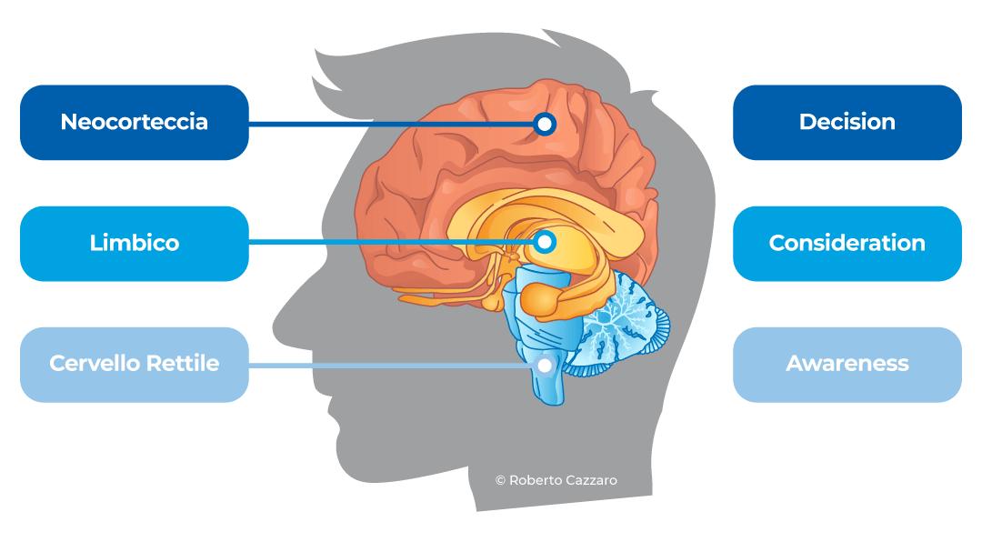 Cervello trino Inbound Marketing Unique